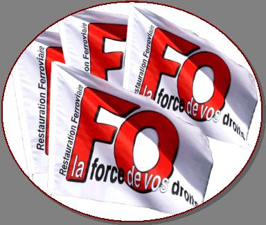 Logo drapeau fo